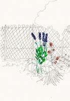 21_jardin.jpg