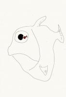 23_fisheye.jpg