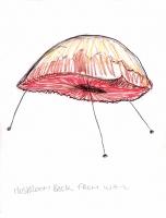 37_mushroom.jpg